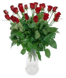 Yozgat çiçekçi telefonları  11 adet kimizi gülün ihtisami cam yada mika vazo modeli
