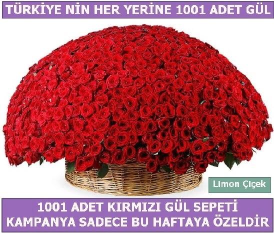 1001 Adet kırmızı gül Bu haftaya özel  Yozgat İnternetten çiçek siparişi