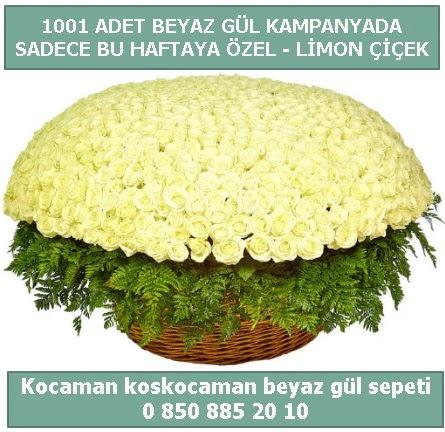 1001 adet beyaz gül sepeti özel kampanyada  Yozgat çiçek gönderme sitemiz güvenlidir