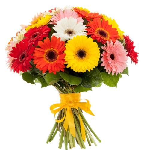 Gerbera demeti buketi  Yozgat çiçek satışı
