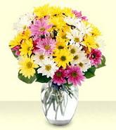 Yozgat internetten çiçek siparişi  mevsim çiçekleri mika yada cam vazo