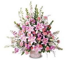Yozgat çiçek siparişi sitesi  Tanzim mevsim çiçeklerinden çiçek modeli