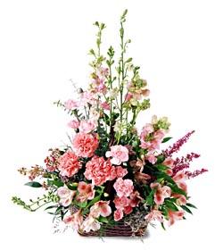 Yozgat ucuz çiçek gönder  mevsim çiçeklerinden özel