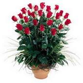 Yozgat uluslararası çiçek gönderme  10 adet kirmizi gül cam yada mika vazo