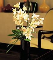 Yozgat çiçekçiler  cam yada mika vazo içerisinde dal orkide