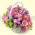 Yozgat yurtiçi ve yurtdışı çiçek siparişi  bir sepet dolusu kir çiçegi  Yozgat çiçek gönderme sitemiz güvenlidir