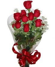 9 adet kaliteli kirmizi gül   Yozgat online çiçekçi , çiçek siparişi