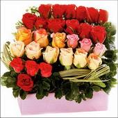 15 adet renkli gül ve cam   Yozgat çiçekçi mağazası
