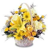 sadece sari çiçek sepeti   Yozgat çiçek gönderme sitemiz güvenlidir