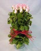 13 adet pembe gül silindirde   Yozgat çiçek yolla