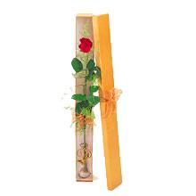 ince  kutuda  1  gül   Yozgat çiçek yolla
