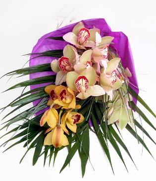 Yozgat cicekciler , cicek siparisi  1 adet dal orkide buket halinde sunulmakta