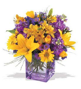 Yozgat çiçek mağazası , çiçekçi adresleri  cam içerisinde kir çiçekleri demeti