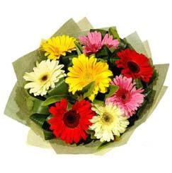 9 adet karisik gerbera demeti  Yozgat çiçek mağazası , çiçekçi adresleri