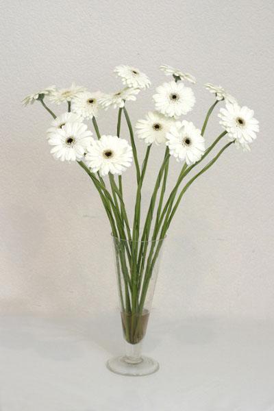 Yozgat çiçek mağazası , çiçekçi adresleri  cam vazo içerisinde 17 adet sade gerbera