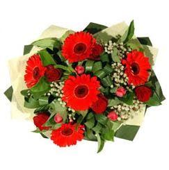 Yozgat ucuz çiçek gönder   5 adet kirmizi gül 5 adet gerbera demeti
