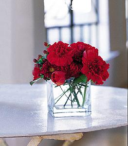 Yozgat ucuz çiçek gönder  kirmizinin sihri cam içinde görsel sade çiçekler
