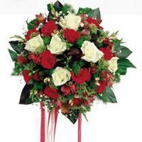 Yozgat ucuz çiçek gönder  6 adet kirmizi 6 adet beyaz ve kir çiçekleri buket