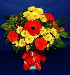 Yozgat ucuz çiçek gönder  sade hos orta boy karisik demet çiçek