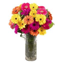 KARISIK GERBERALARDAN CAM VAZO TANZIMI  Yozgat güvenli kaliteli hızlı çiçek