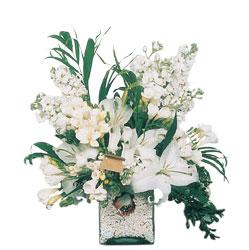 Yozgat internetten çiçek siparişi  sadece beyazlardan olusmus mevsim cam yada mika tanzim