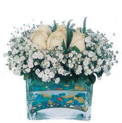 Yozgat çiçekçi mağazası  mika yada cam içerisinde 7 adet beyaz gül