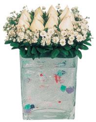 Yozgat çiçekçi mağazası  7 adet beyaz gül cam yada mika vazo tanzim
