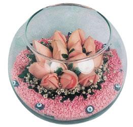 Yozgat internetten çiçek satışı  cam fanus içerisinde 10 adet gül