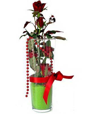 Yozgat online çiçek gönderme sipariş  Cam yada mika içerisinde 9 adet kirmizi gül - sevdiklerinize özel