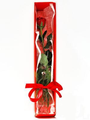 Yozgat yurtiçi ve yurtdışı çiçek siparişi  1 adet kutuda gül