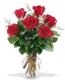Yozgat çiçek gönderme sitemiz güvenlidir  7 adet kirmizi gül cam yada mika vazoda sevenlere