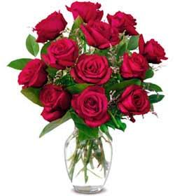 Yozgat online çiçek gönderme sipariş  1 düzine kirmizi gül sevenlere özel vazo gülleri