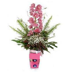 Yozgat hediye çiçek yolla  cam yada mika vazo içerisinde tek dal orkide çiçegi