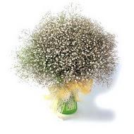 Yozgat çiçek mağazası , çiçekçi adresleri  cam yada mika vazo içerisinde cipsofilya demeti