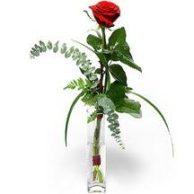 Yozgat 14 şubat sevgililer günü çiçek  Sana deger veriyorum bir adet gül cam yada mika vazoda