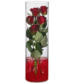 cam içerisinde 7 adet kirmizi gül  Yozgat çiçekçiler