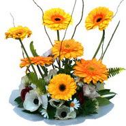 camda gerbera ve mis kokulu kir çiçekleri  Yozgat çiçekçi telefonları