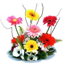 Yozgat hediye çiçek yolla  camda gerbera ve mis kokulu kir çiçekleri
