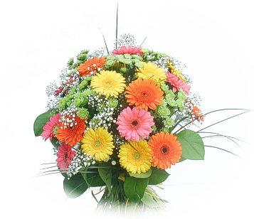 13 adet gerbera çiçegi buketi  Yozgat online çiçek gönderme sipariş