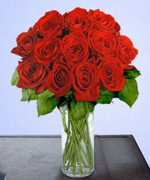 Anneme 12 adet cam içerisinde kirmizi gül  Yozgat çiçek siparişi sitesi