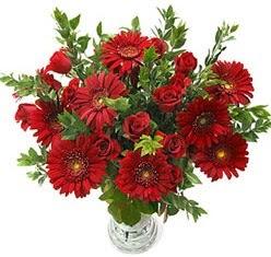 5 adet kirmizi gül 5 adet gerbera aranjmani  Yozgat hediye çiçek yolla