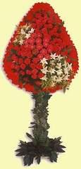 Yozgat çiçek gönderme  dügün açilis çiçekleri  Yozgat çiçek online çiçek siparişi