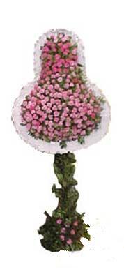 Yozgat ucuz çiçek gönder  dügün açilis çiçekleri  Yozgat internetten çiçek siparişi