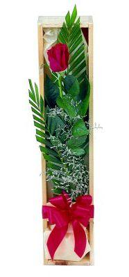 1 adet kutuda kirmizi gül  Yozgat çiçek gönderme sitemiz güvenlidir