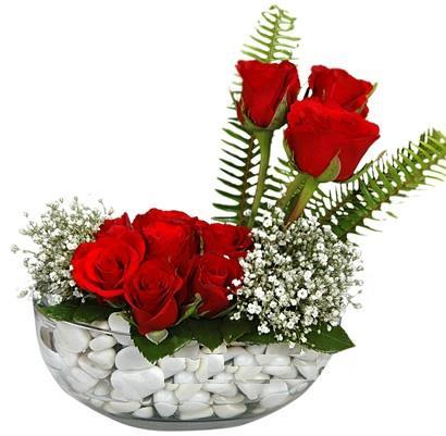 cam içerisinde 9 adet kirmizi gül  Yozgat çiçek siparişi vermek