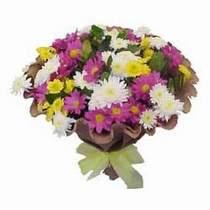 Yozgat çiçekçi telefonları  Mevsim kir çiçegi demeti