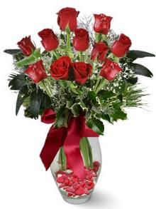 9 adet gül  Yozgat internetten çiçek satışı  kirmizi gül