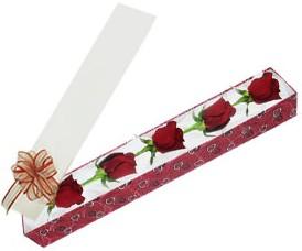 Yozgat internetten çiçek satışı  kutu içerisinde 5 adet kirmizi gül
