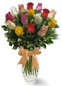 15 adet vazoda renkli gül  Yozgat internetten çiçek satışı