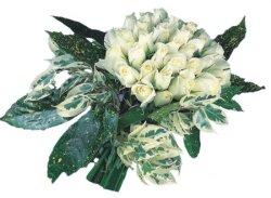 Yozgat internetten çiçek siparişi  9 Beyaz gül Özel kisiler için